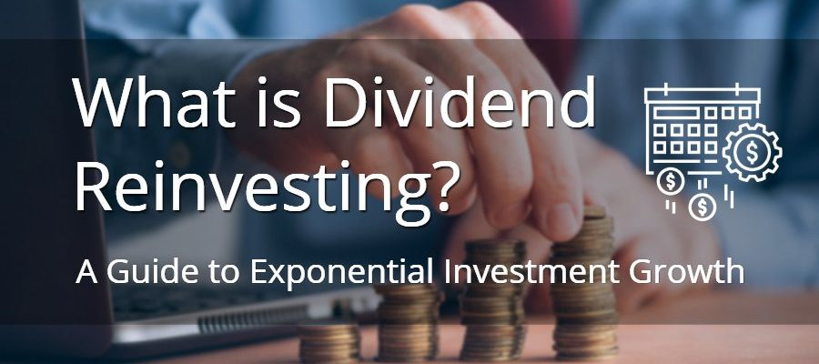 What is Dividend Reinvestment? A Guide to Exponential Growth